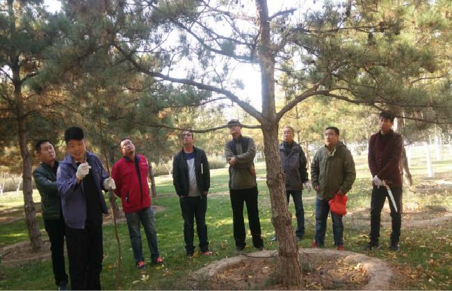 北京艺苑风景园林工程有限公司